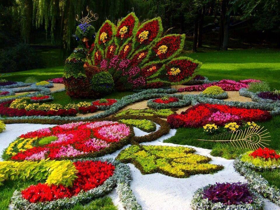 Какую цветочную клумбу выбрать для своего участка?