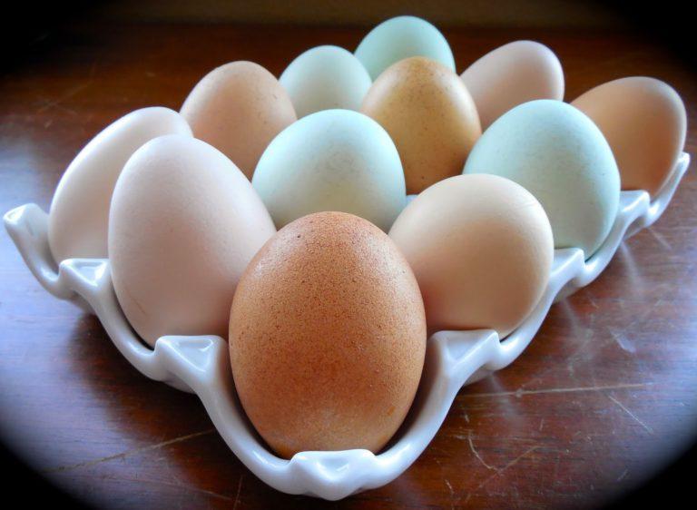 Стоит ли есть яйца, которые готовились более 30 минут? Мнение двух экспертов о усвоении такого белка.