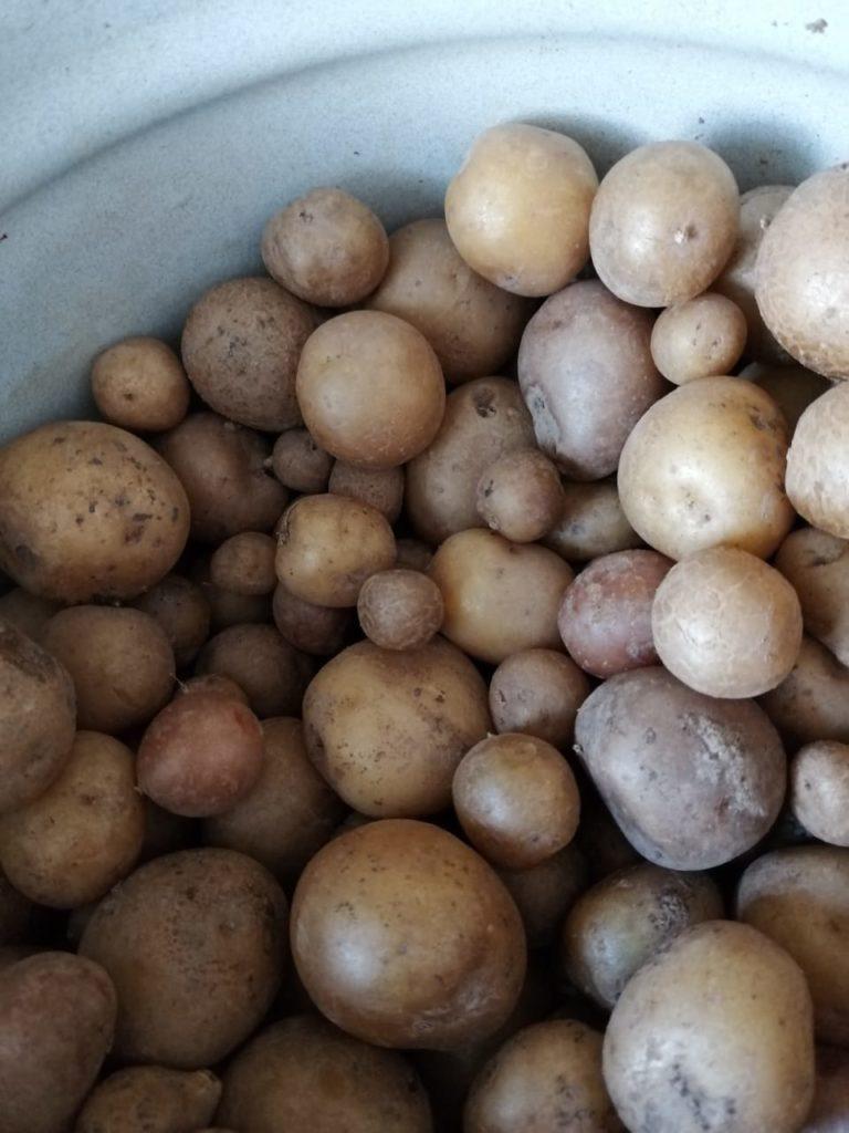 Зразы с грибами и  фаршем
